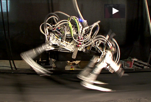 Boston Dynamics' Cheeta Robot VIDEO
