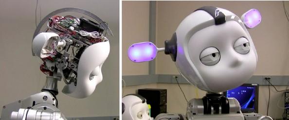 Meka's S1 Humanoid Head Image